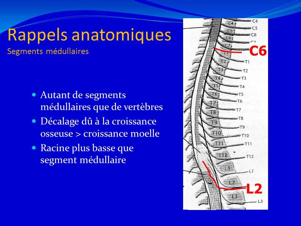 Rappels anatomiques Segments médullaires Autant de segments médullaires que de vertèbres Décalage dû à la croissance osseuse > croissance moelle Racin