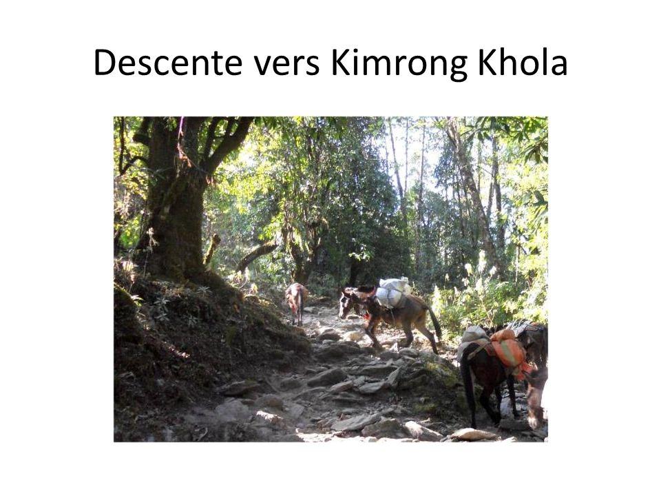 Descente vers Kimrong Khola