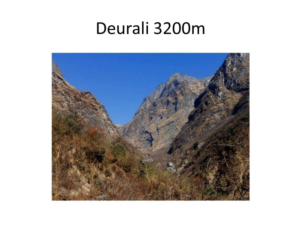 Deurali 3200m