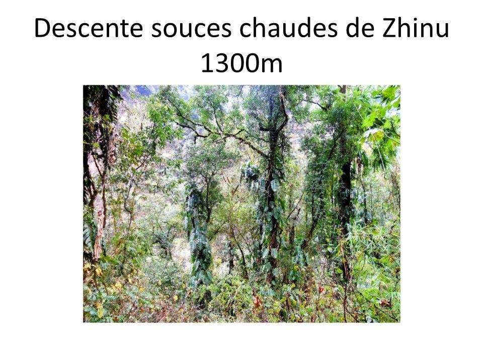 Descente souces chaudes de Zhinu 1300m
