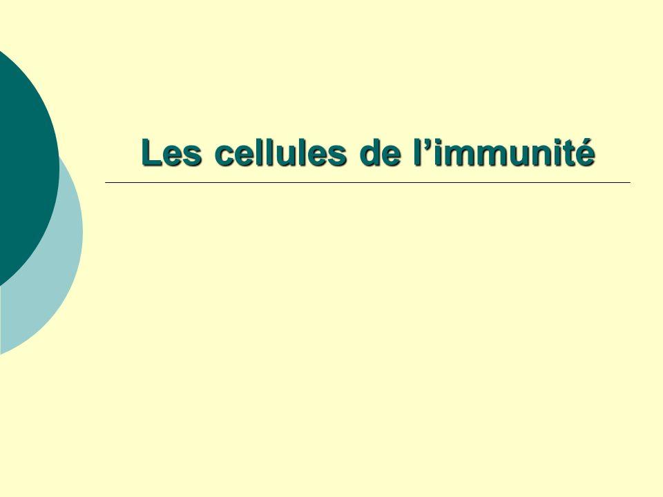 Les cellules de limmunité