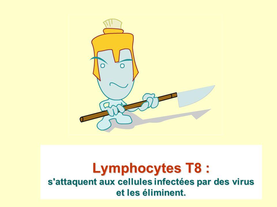Lymphocytes T8 : s'attaquent aux cellules infectées par des virus et les éliminent.