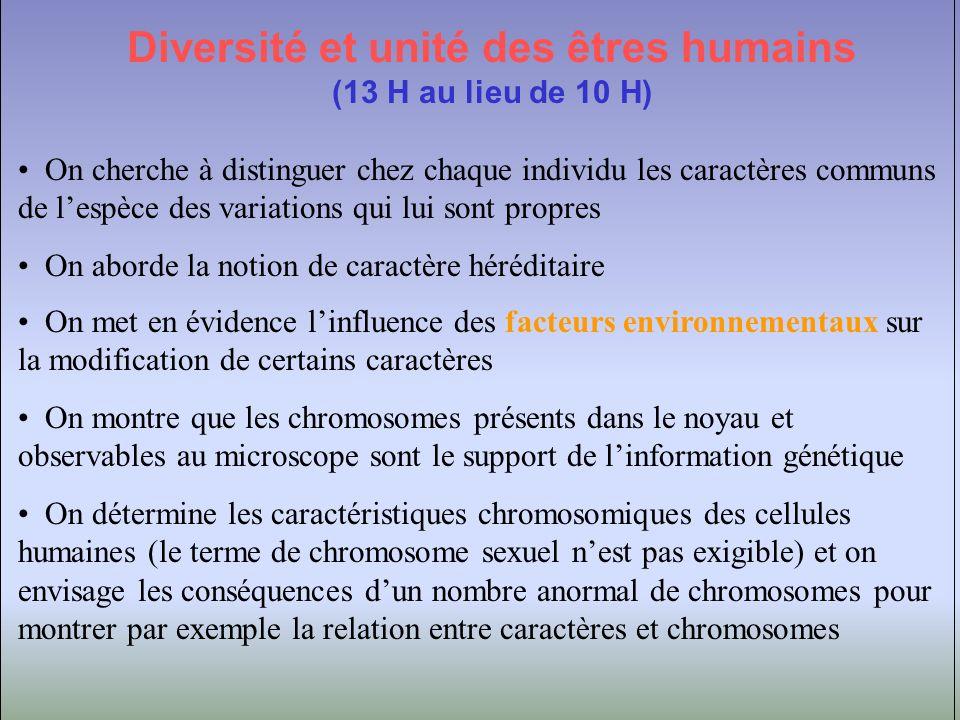 Diversité et unité des êtres humains (suite) On aborde la composition en ADN des chromosomes et des noyaux pour montrer la permanence de celui-ci au sein de la cellule.