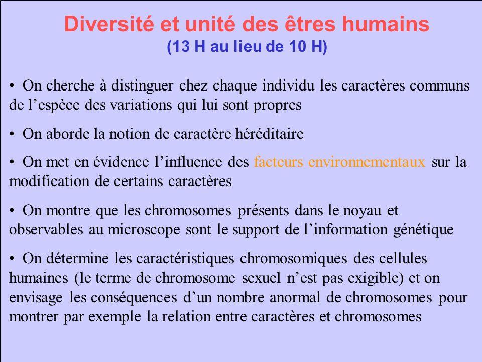 Diversité et unité des êtres humains (suite) On aborde la composition en ADN des chromosomes et des noyaux pour montrer la permanence de celui-ci au sein de la cellule : lextraction et la coloration de lADN des cellules végétales est nécessaire.