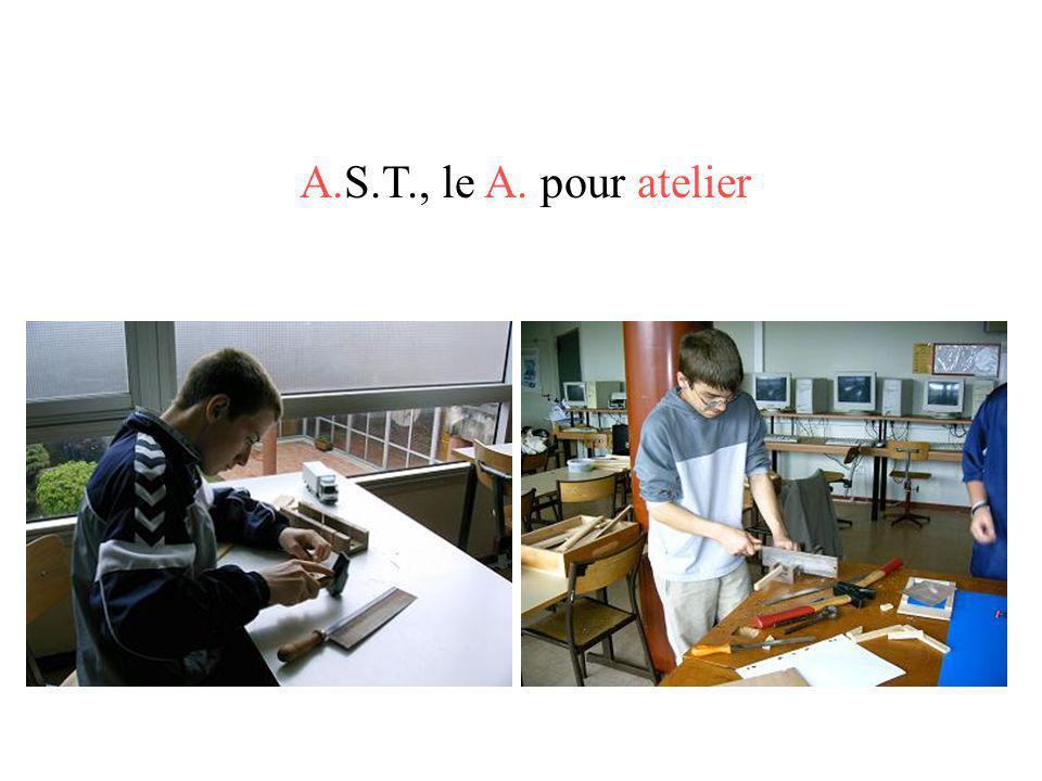 Collège Daniel Huet – 14 Hérouville-Saint-Clair Professeur : Hervé CATHERINE, professeur de SVT.