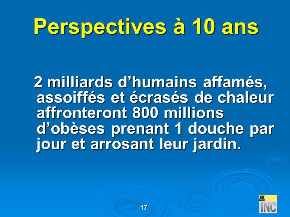 17 Perspectives à 10 ans 2 milliards dhumains affamés, assoiffés et écrasés de chaleur affronteront 800 millions dobèses prenant 1 douche par jour et
