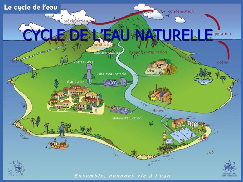 1 Le cycle de leau C.Quemat – M Delahaie LP Jean Jooris-Dives sur mer Académie de Caen