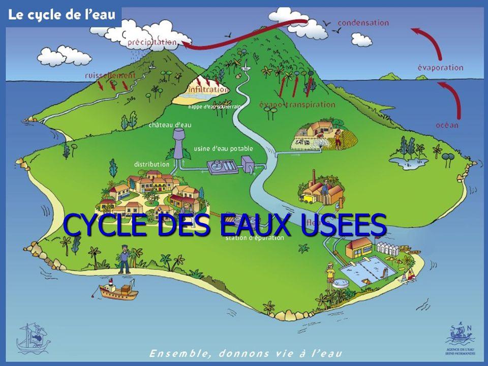 26 CYCLE DES EAUX USEES CYCLE DES EAUX USEES CYCLE DES EAUX USEES
