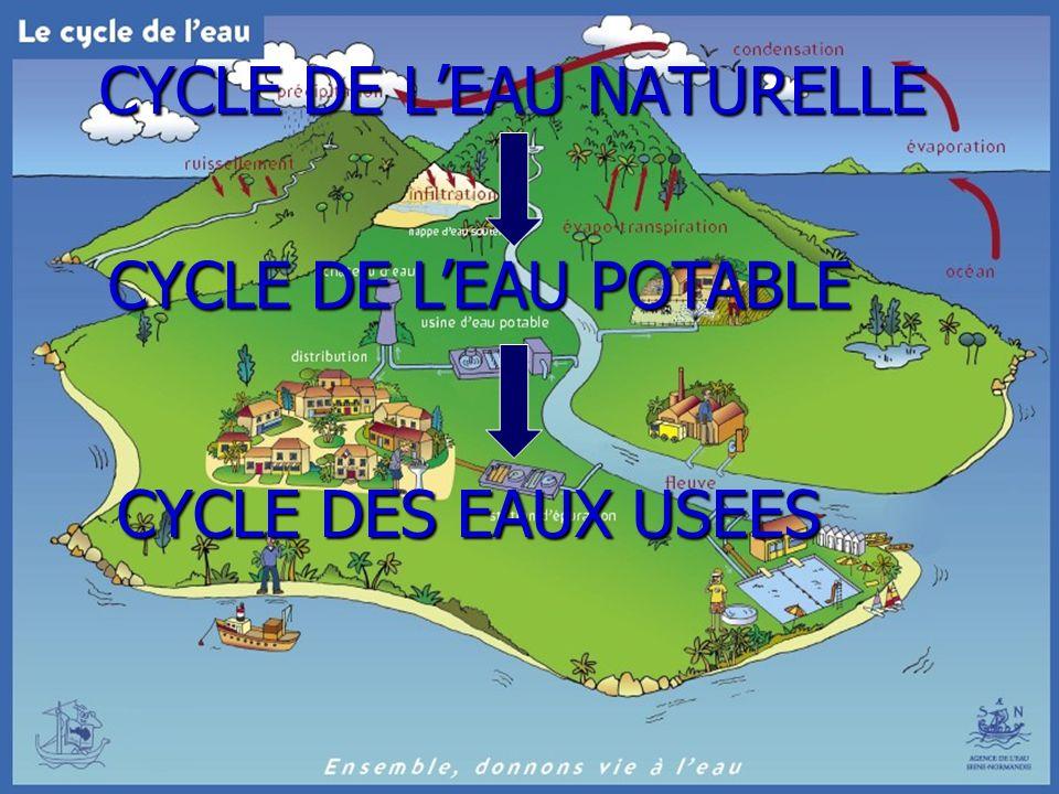 37 CYCLE DE LEAU NATURELLE CYCLE DE LEAU POTABLE CYCLE DES EAUX USEES