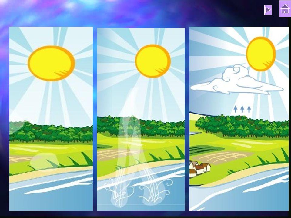 3 Évaporation et évapo-transpiration Évaporation et évapo-transpiration Évaporation et évapo-transpiration Évaporation et évapo-transpiration Condensa