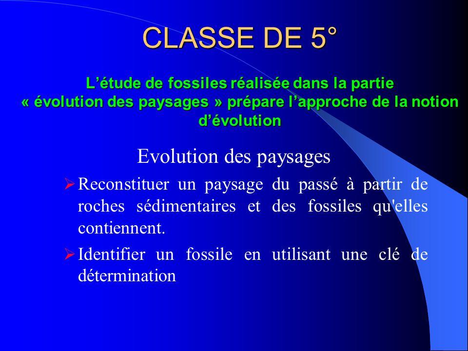 CLASSE DE 5° Létude de fossiles réalisée dans la partie « évolution des paysages » prépare lapproche de la notion dévolution Evolution des paysages Re
