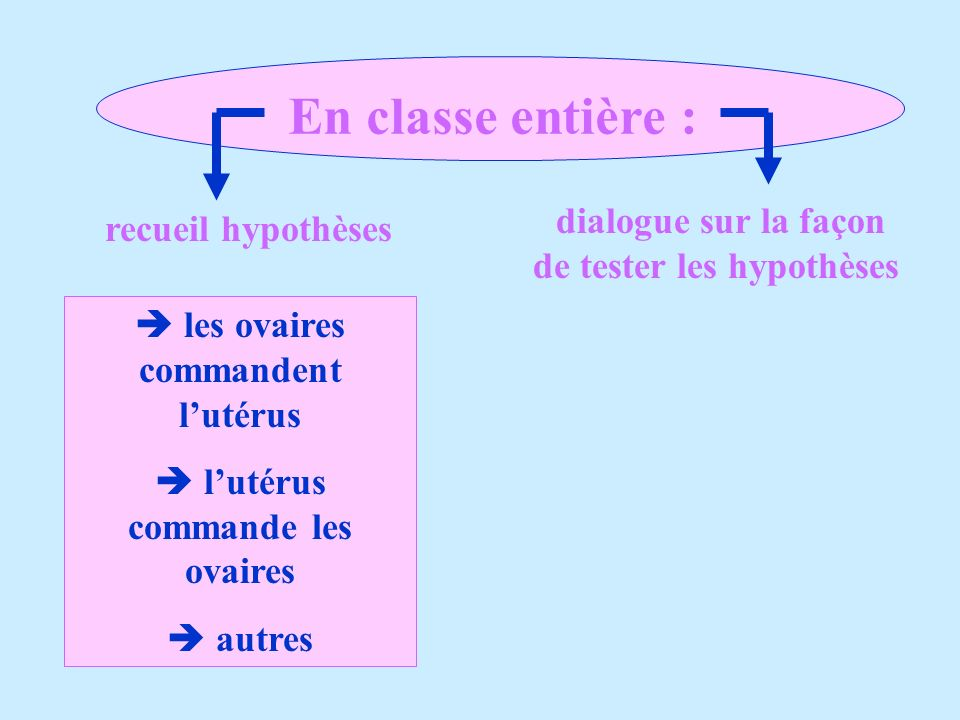 En classe entière : les ovaires commandent lutérus lutérus commande les ovaires autres recueil hypothèses dialogue sur la façon de tester les hypothès