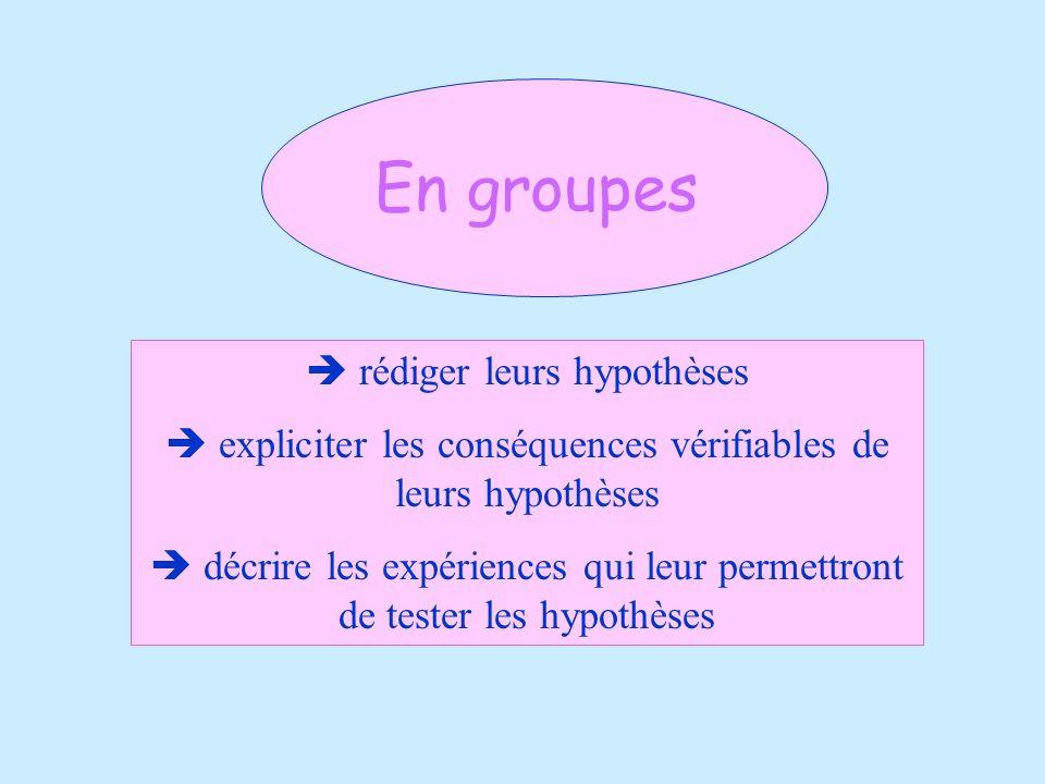 En groupes rédiger leurs hypothèses expliciter les conséquences vérifiables de leurs hypothèses décrire les expériences qui leur permettront de tester
