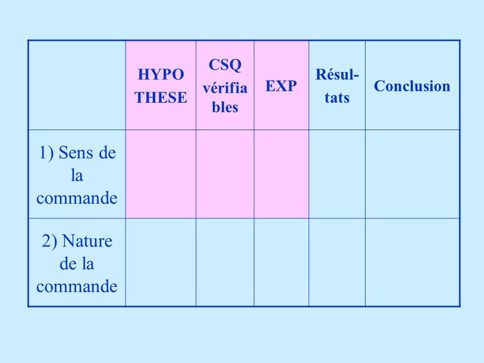 HYPO THESE CSQ vérifia bles EXP Résul- tats Conclusion 1) Sens de la commande 2) Nature de la commande