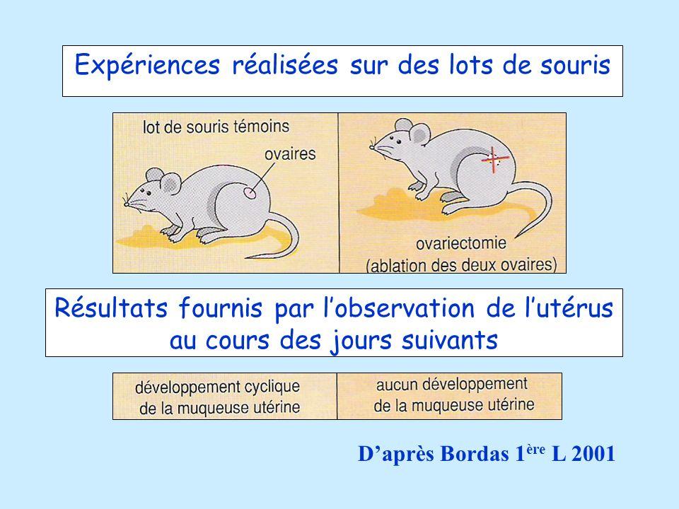 Expériences réalisées sur des lots de souris Résultats fournis par lobservation de lutérus au cours des jours suivants Daprès Bordas 1 ère L 2001