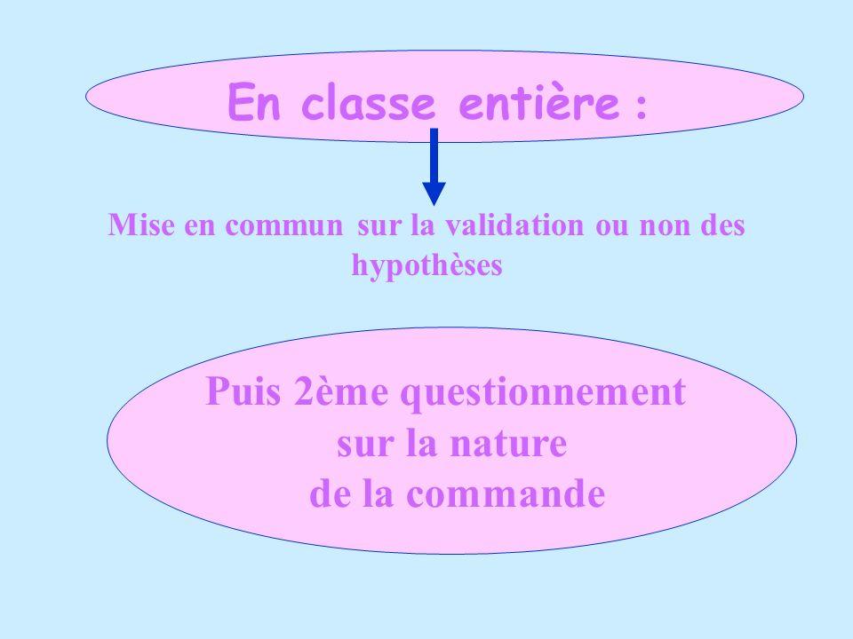 En classe entière : Mise en commun sur la validation ou non des hypothèses Puis 2ème questionnement sur la nature de la commande