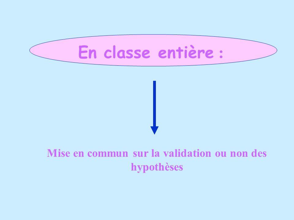 En classe entière : Mise en commun sur la validation ou non des hypothèses
