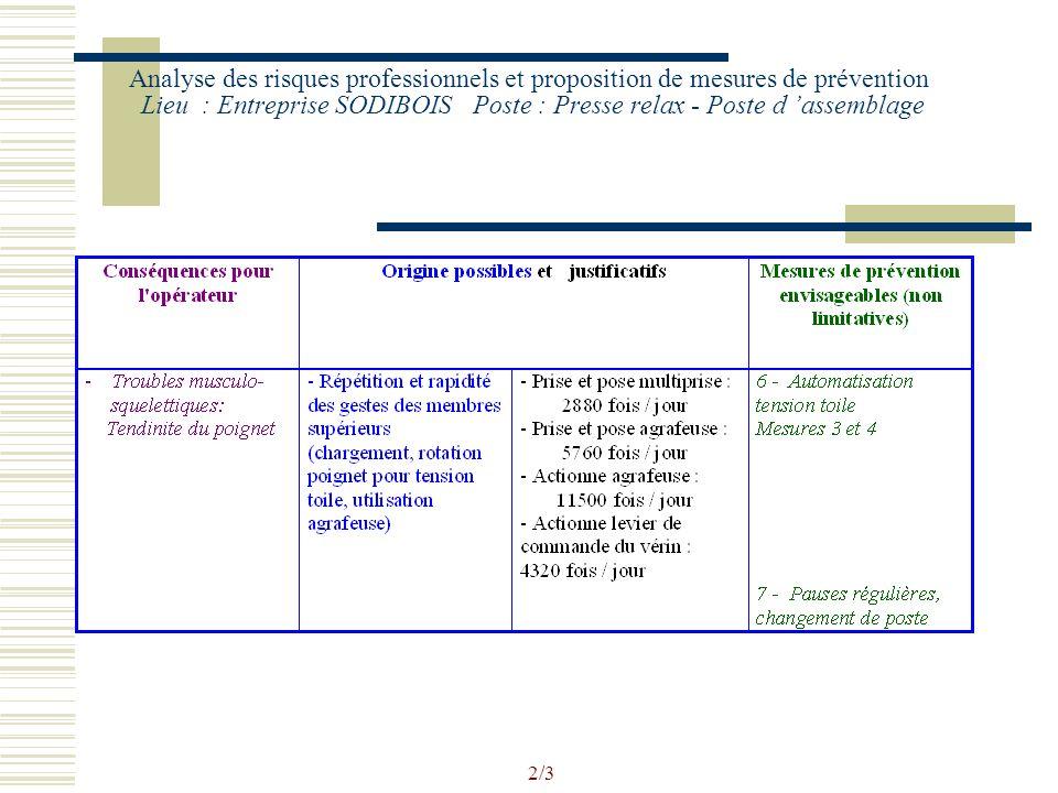 1/3 Analyse des risques professionnels et proposition de mesures de prévention Lieu : Entreprise SODIBOIS Poste : Presse relax - Poste d assemblage