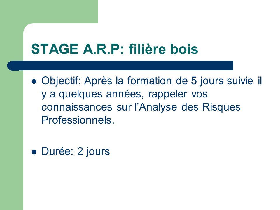 Léquipe danimateurs Raphaël Chauvois, coordonnateur EPRP/ formateur ARP Frédéric, professeur délectrotechnique / formateur ARP Jean-Marc Thiberge, con