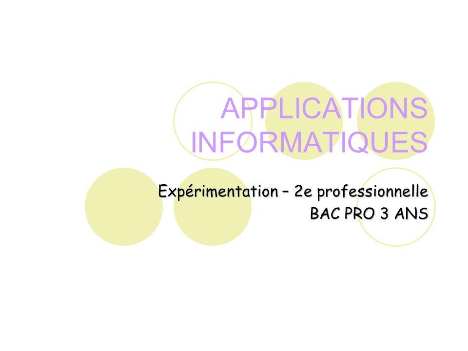 APPLICATIONS INFORMATIQUES Expérimentation – 2e professionnelle BAC PRO 3 ANS