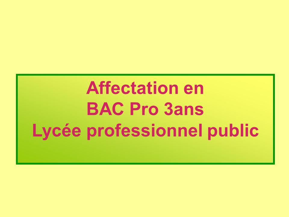 Affectation en BAC Pro 3ans Lycée professionnel public