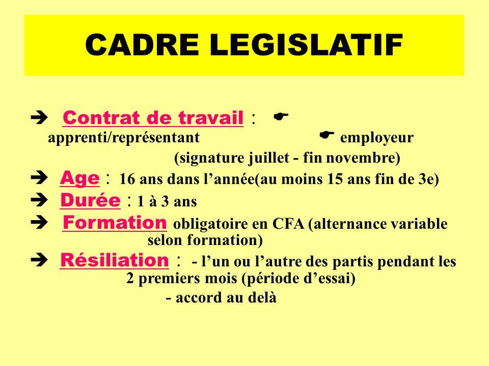 CADRE LEGISLATIF Contrat de travail : apprenti/représentant employeur (signature juillet - fin novembre) Age : 16 ans dans lannée(au moins 15 ans fin