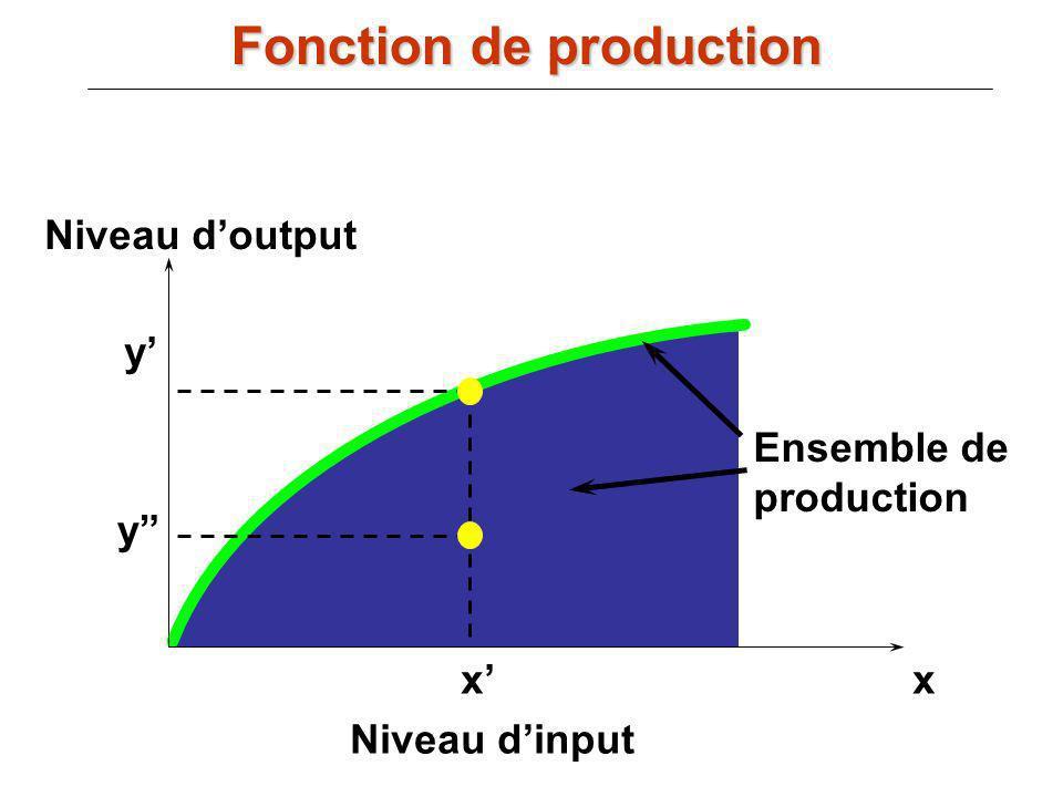 xx Niveau dinput Niveau doutput y y Ensemble de production Fonction de production