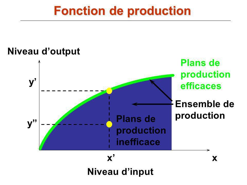 xx Niveau dinput Niveau doutput y y Ensemble de production Plans de production inefficace Plans de production efficaces Fonction de production