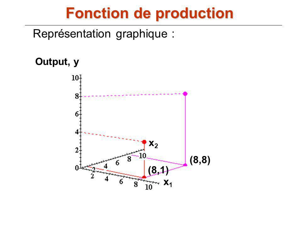 Output, y x1x1 x2x2 (8,1) (8,8) Représentation graphique : Fonction de production