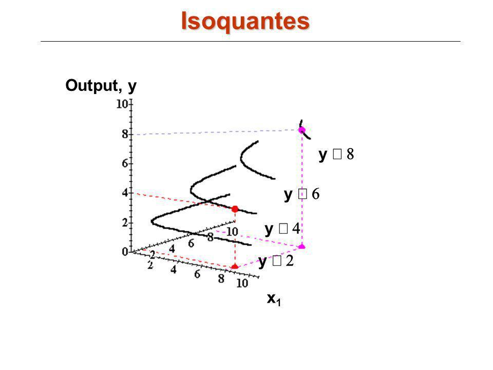 Output, y x1x1 x2x2 y y y y Isoquantes