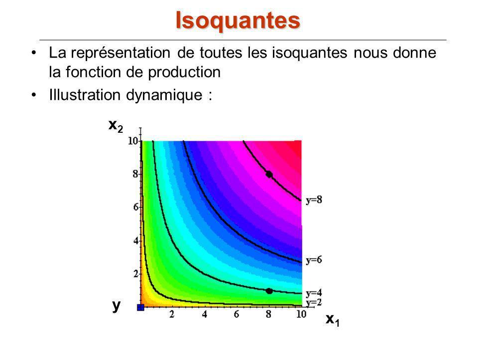 La représentation de toutes les isoquantes nous donne la fonction de production Illustration dynamique : Isoquantes x1x1 x2x2 y