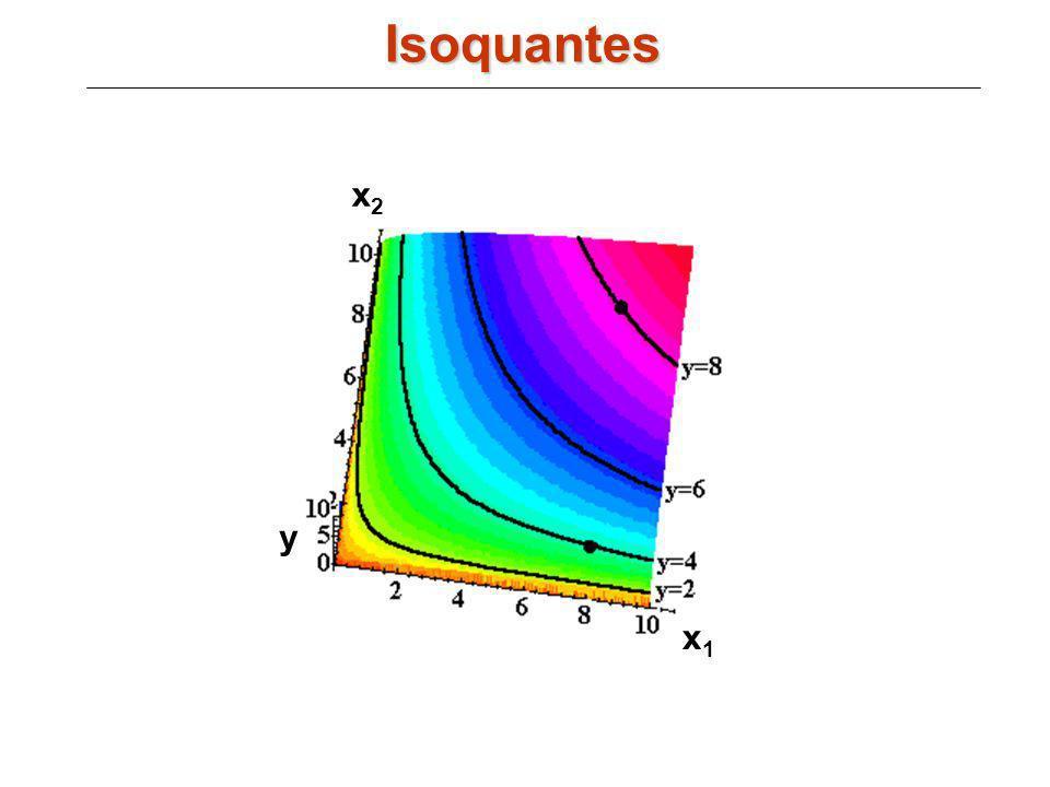 x1x1 x2x2 y Isoquantes