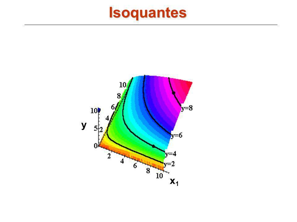 x1x1 y Isoquantes