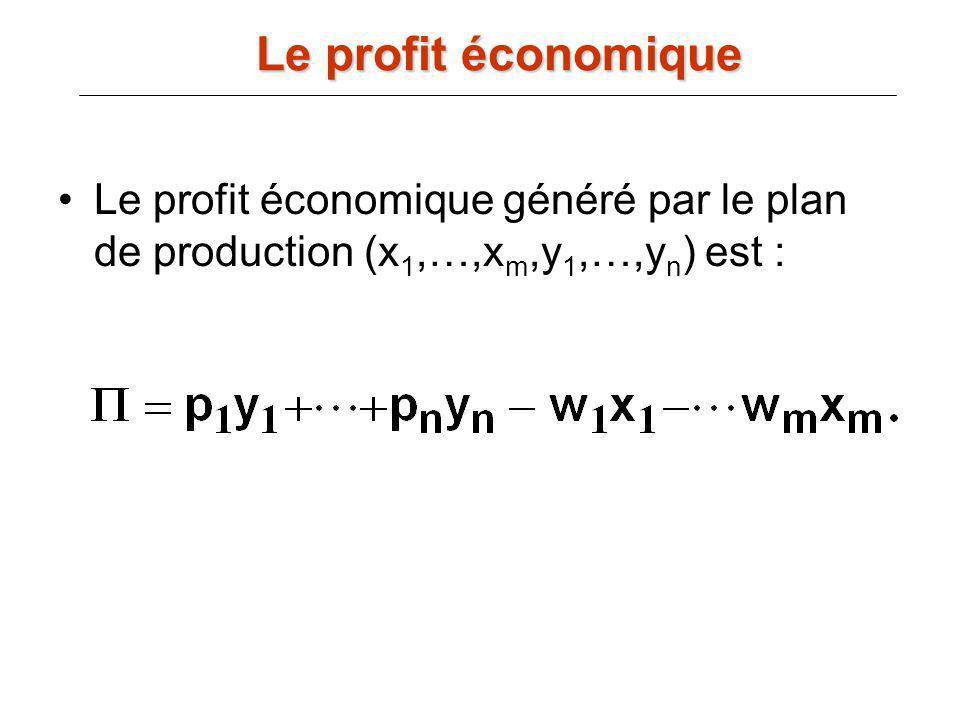 Le profit économique généré par le plan de production (x 1,…,x m,y 1,…,y n ) est : Le profit économique