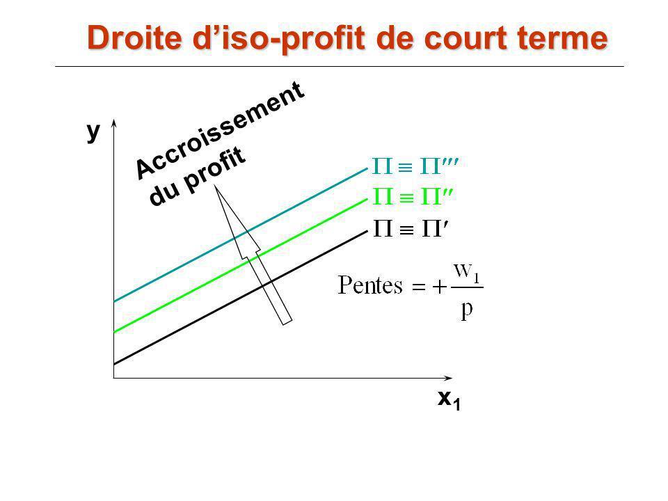 Accroissement du profit y x1x1 Droite diso-profit de court terme