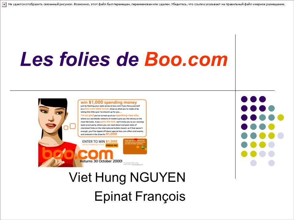 Les folies de Boo.com Viet Hung NGUYEN Epinat François