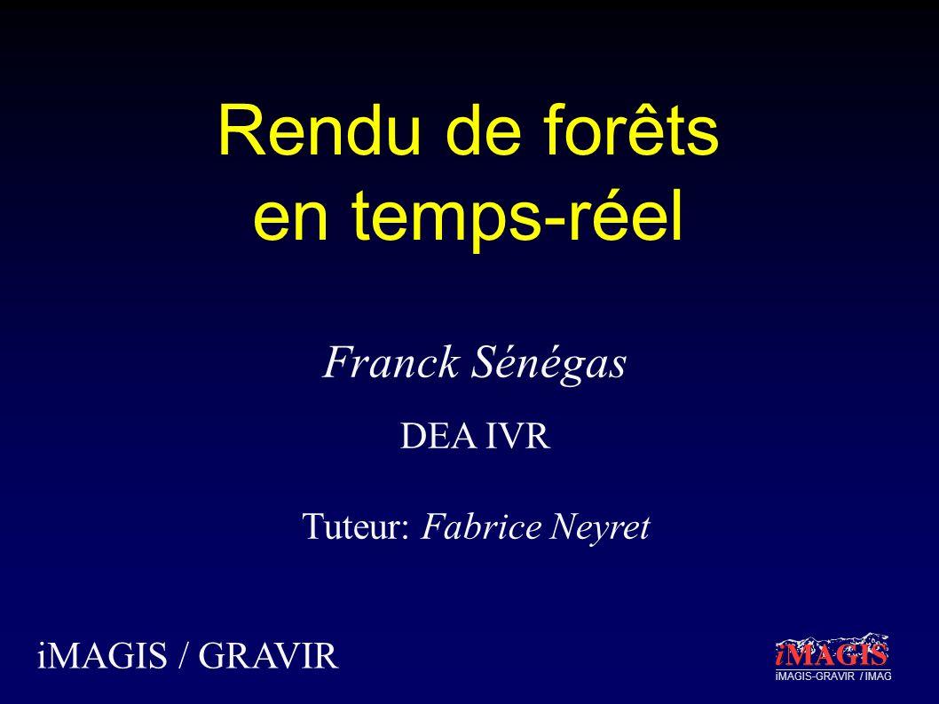 iMAGIS-GRAVIR / IMAG Rendu de forêts en temps-réel iMAGIS / GRAVIR Franck Sénégas DEA IVR Tuteur: Fabrice Neyret