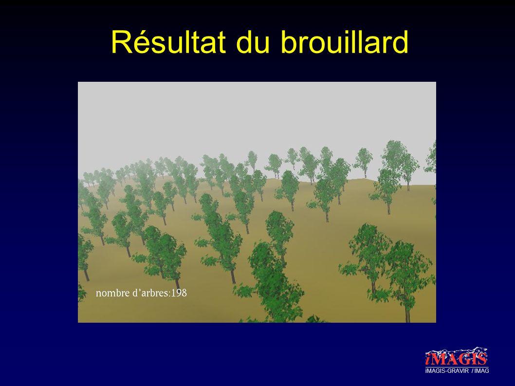iMAGIS-GRAVIR / IMAG Résultat du brouillard