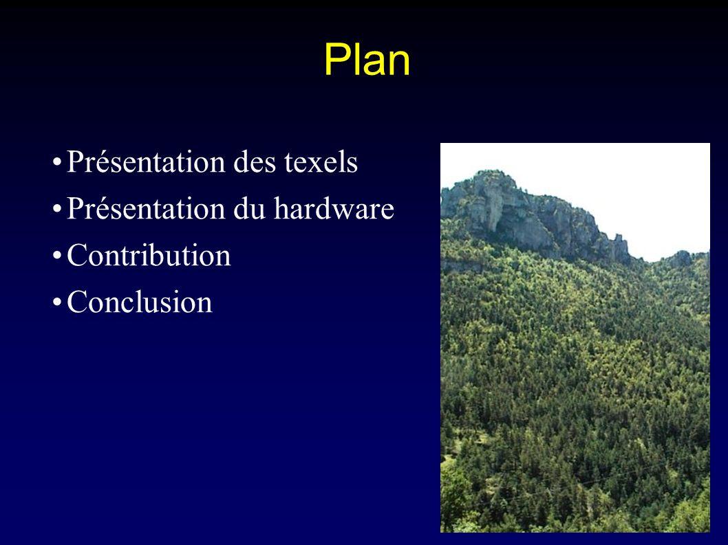 iMAGIS-GRAVIR / IMAG Plan Présentation des texels Présentation du hardware Contribution Conclusion