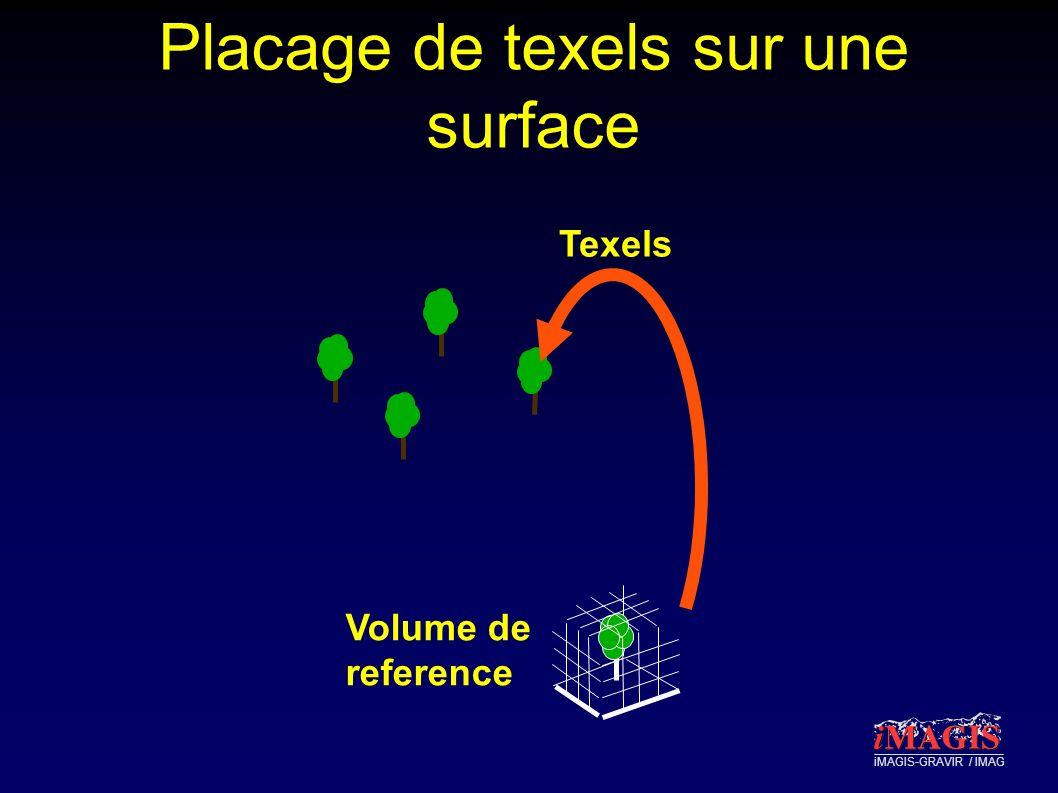 iMAGIS-GRAVIR / IMAG Placage de texels sur une surface Texels Volume de reference