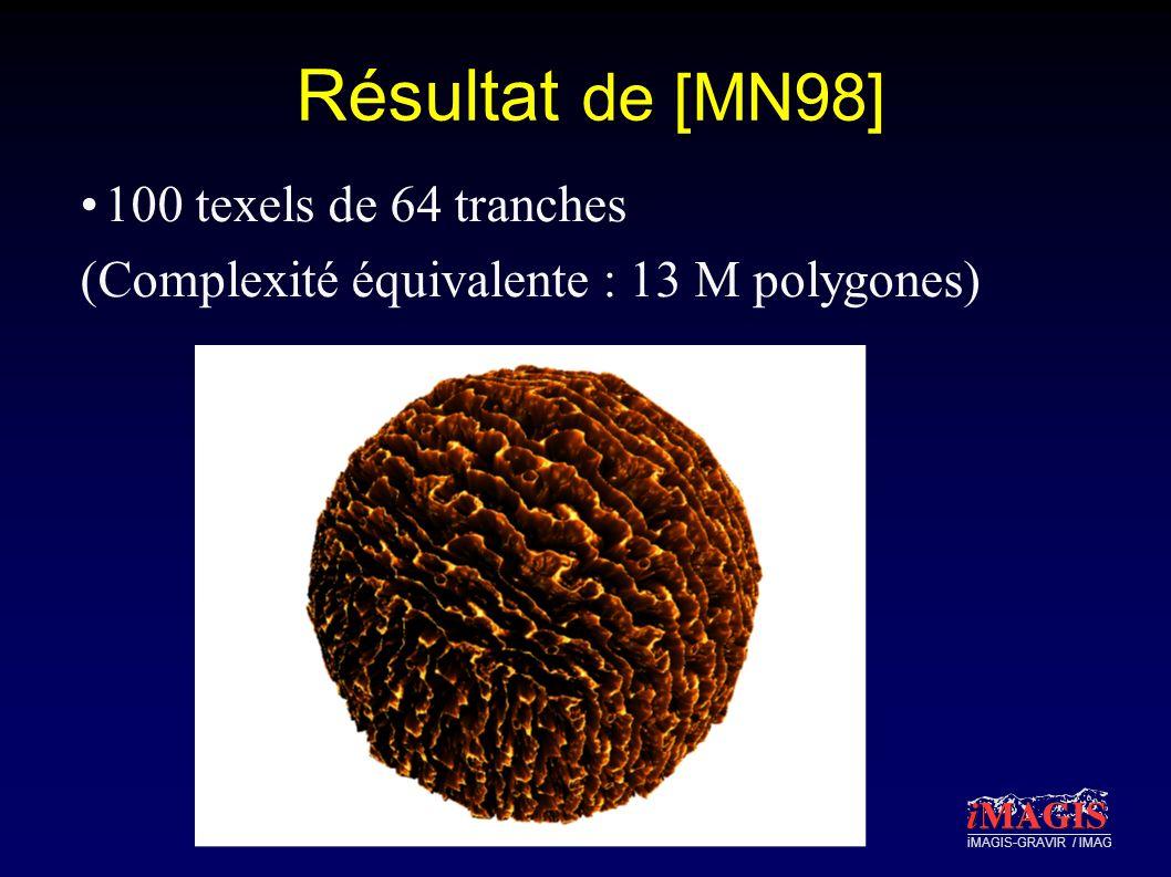 iMAGIS-GRAVIR / IMAG Résultat de [MN98] 100 texels de 64 tranches (Complexité équivalente : 13 M polygones)