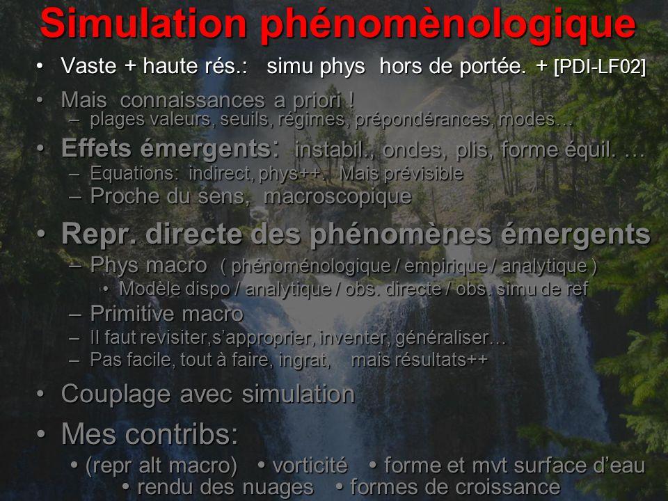 Simulation phénomènologique Vaste + haute rés.: simu phys hors de portée.