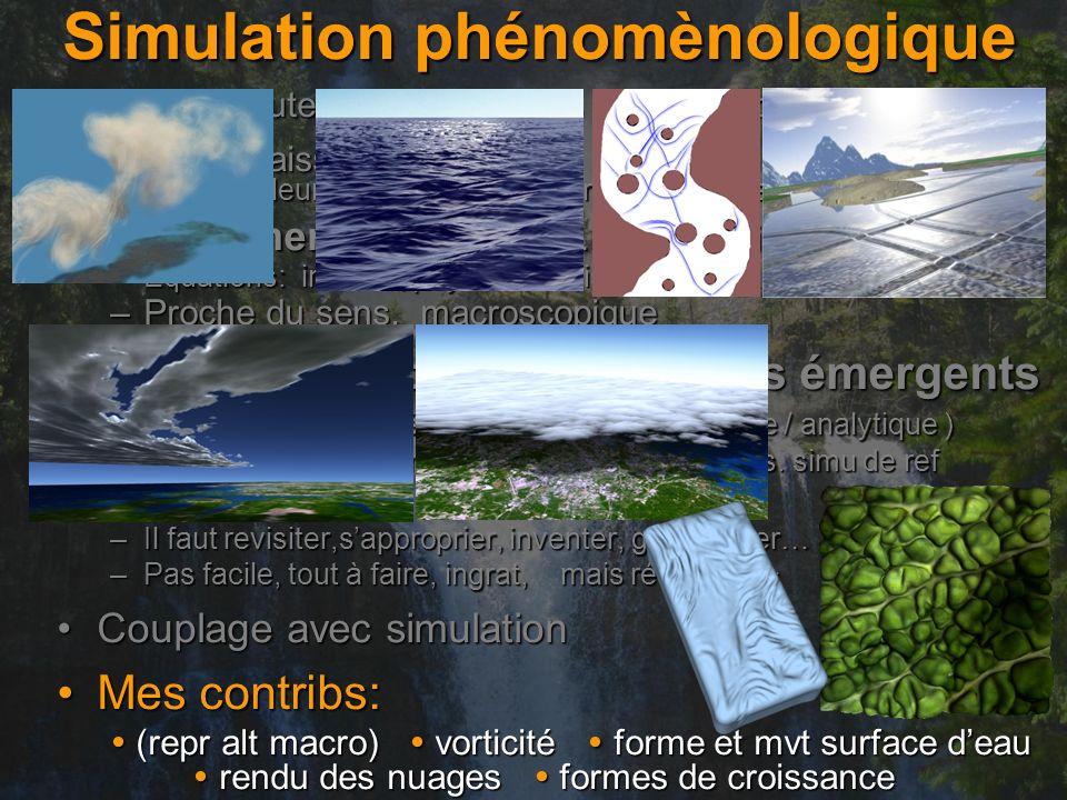 Simulation phénomènologique Vaste + haute rés.: simu phys hors de portéeVaste + haute rés.: simu phys hors de portée Mais connaissances a priori !Mais connaissances a priori .