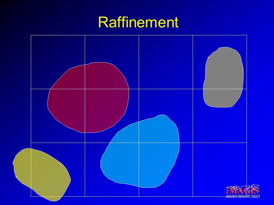 iMAGIS-GRAVIR / IMAG Raffinement