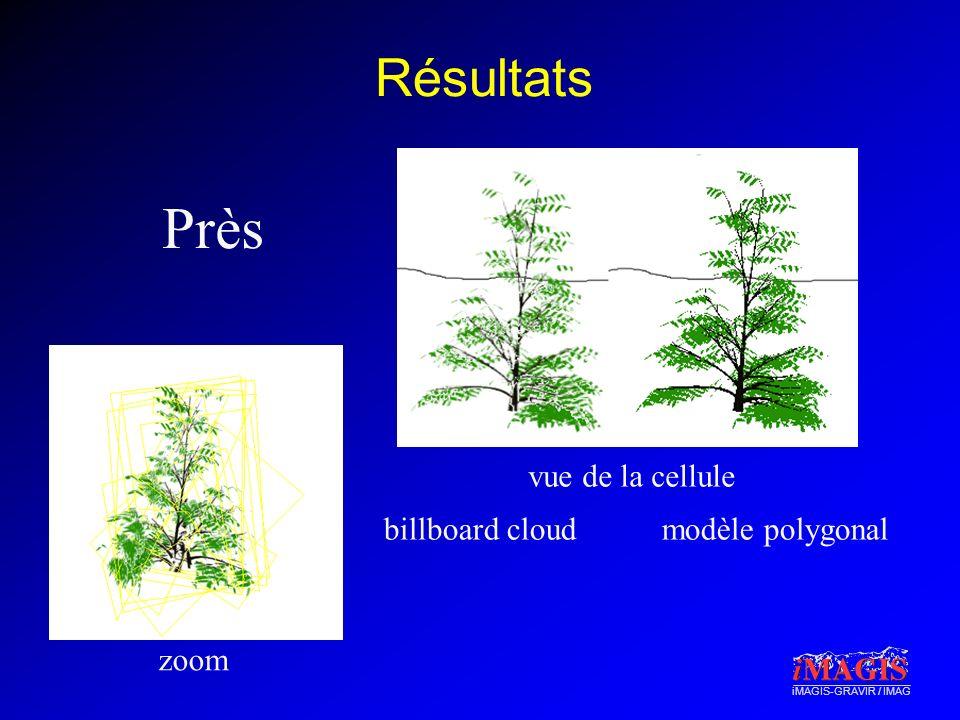 iMAGIS-GRAVIR / IMAG Résultats Près zoom vue de la cellule billboard cloudmodèle polygonal