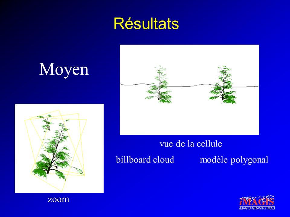 iMAGIS-GRAVIR / IMAG Résultats Moyen zoom vue de la cellule billboard cloudmodèle polygonal