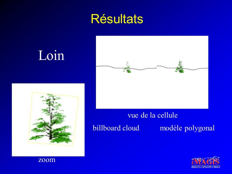 iMAGIS-GRAVIR / IMAG Résultats Loin zoom vue de la cellule billboard cloudmodèle polygonal