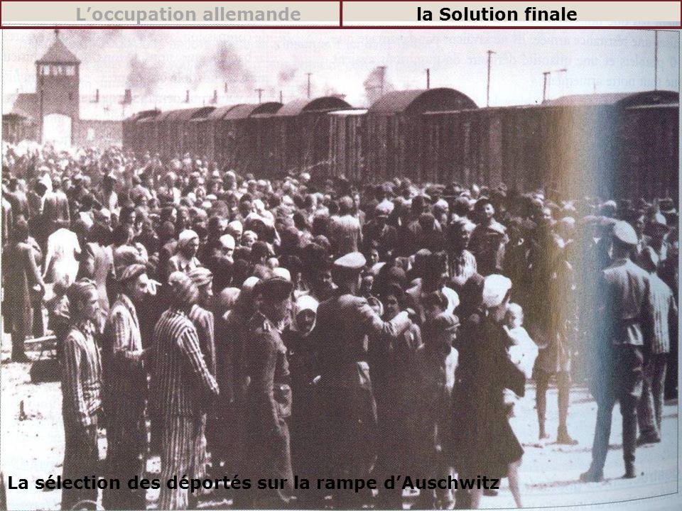 La sélection des déportés sur la rampe dAuschwitz Loccupation allemandela Solution finale