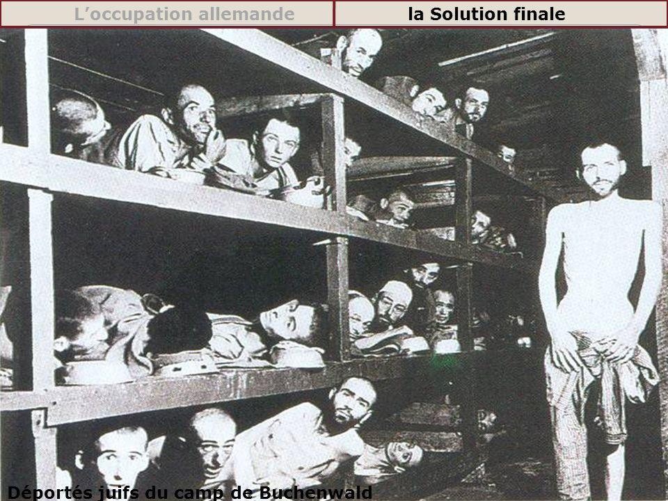 Déportés juifs du camp de Buchenwald Loccupation allemandela Solution finale