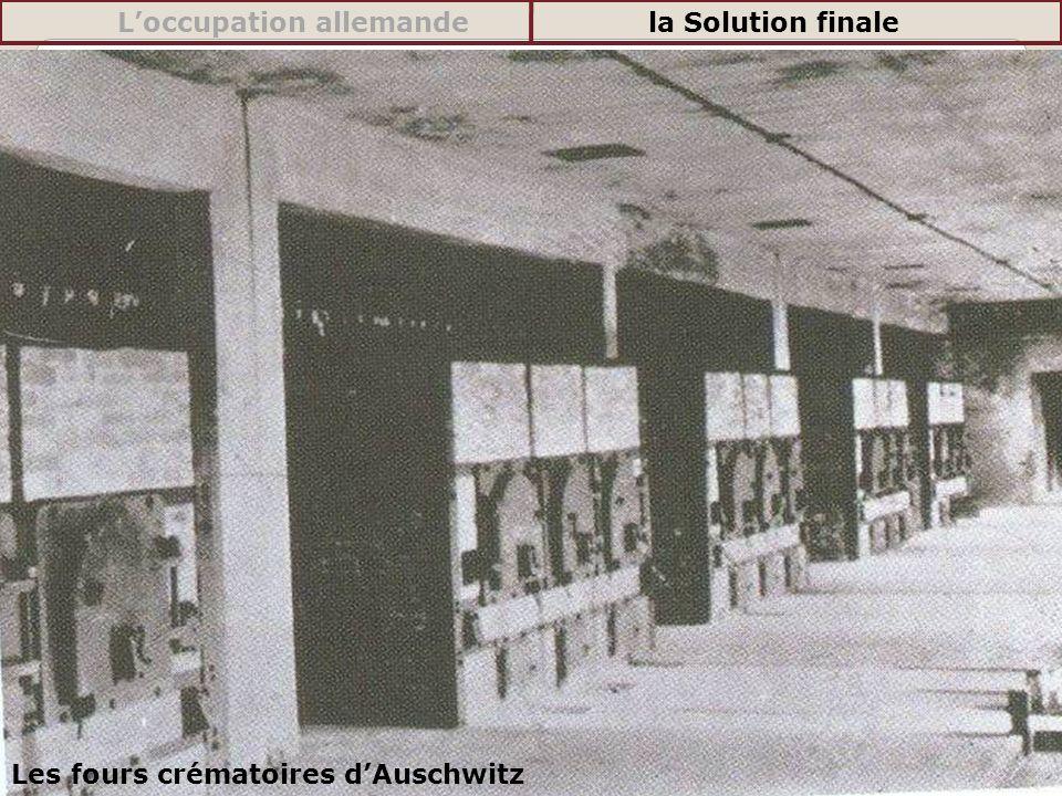 Les fours crématoires dAuschwitz Loccupation allemandela Solution finale